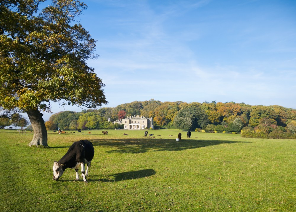 Rural Estate Management