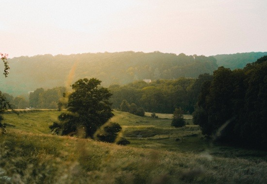 The window for applying for Countryside Stewardship Schemes with a start date of 1 January 2020 opened on Monday 18 February 2019.