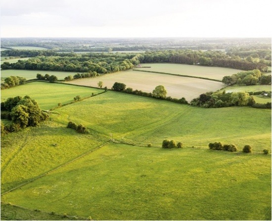 Land Valuation Service